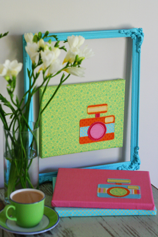 Camera canvases